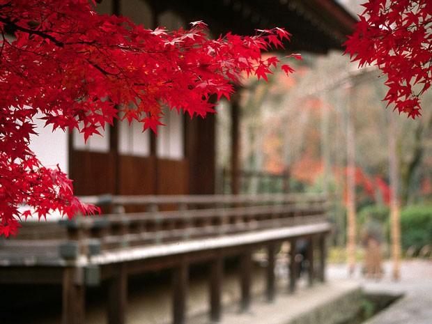 Reprodução: globo.com (  Creative Commons) - Templo de Tenryuji