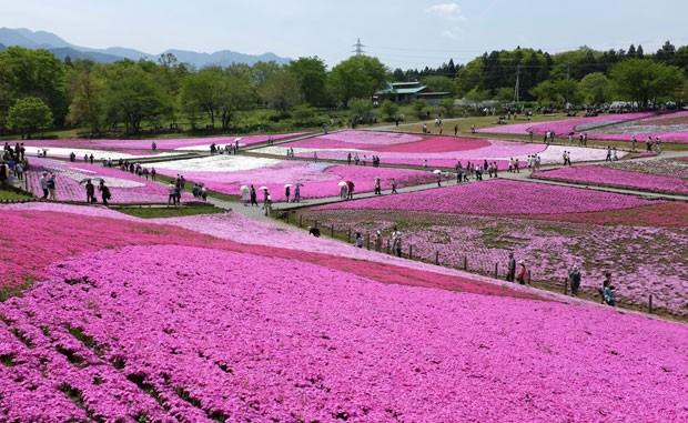 Reprodução: globo.com (Kazuhiro Nogi /AFP)